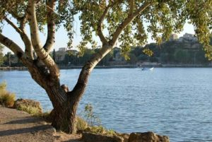Taxi Istres - Etang de l'olivier